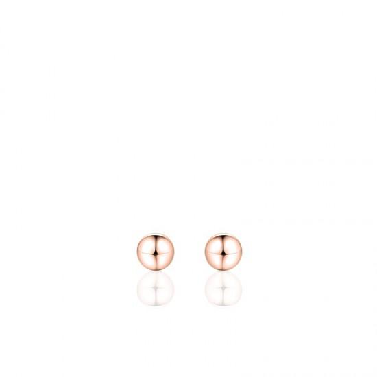 Zilveren Oorbellen - 602366